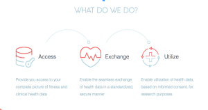 Blockchain-Powered Solutions For Healthcare: What Makes Grapevine A Leader
